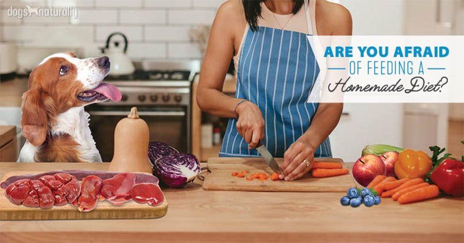 cocinando para tu perr